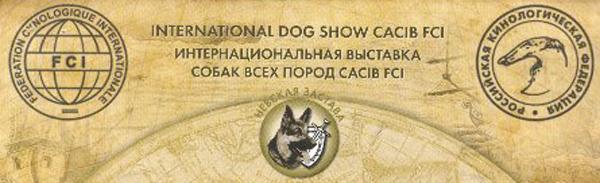 Международная выставка собак «Балтийский триумф 2012»